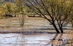 Flood. Lashihai lake, Yunnan Province, China Stock Images