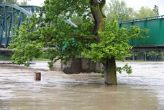 Flood near bridge Royalty Free Stock Images