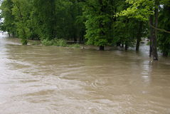 Flood in park. City park inundation by river Stock Photos