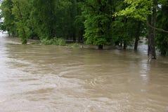 Flood in park Stock Photos