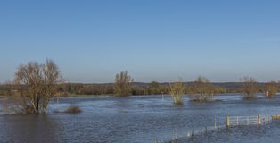 Flood Plains of river IJssel Gelderland. Flood plains at the river IJssel near Dieren in Gelderland Stock Image