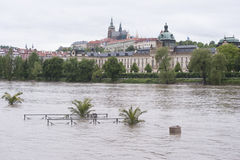 Flood in Prague Stock Photography