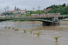 Flood in Prague. Flood on the river Vltava in Prague , Czech republic royalty free stock photos