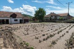 Flood in 2014 - Pridijel - Bosnia And Herzegovina Stock Images