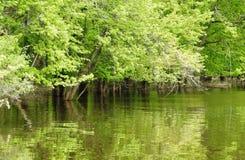 Flood stock photography
