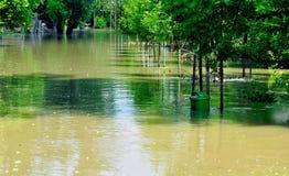 Flood on the river Danube. At riverside 'Romai' in Budapest stock photo