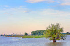 Flood of the river Danube. In galati city- romania stock images