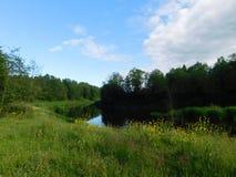 The Oredezh river . Stock Photos