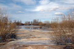 Flood on river at springtime Royalty Free Stock Photography