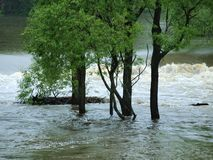 Flood swollen river. South Bohemia royalty free stock photos