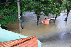 Flood in town. Flood in tropical town, caribbean Stock Image