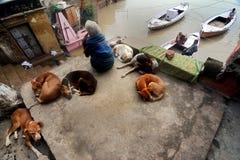 Flood in Varanasi Stock Photo