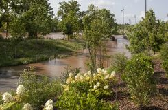 Flood water covering walking trail and pedestrian bridge in park with wildflowers near Arkansas River in Tulsa OK USA during 100-. Yr flood royalty free stock image