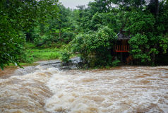 Flood. Water Flood From Mountain after Heavy raining Stock Image