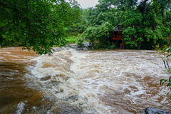 Flood. Water Flood From Mountain after Heavy raining Royalty Free Stock Image