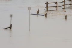 Flood Water Surrounding Sign Royalty Free Stock Photography