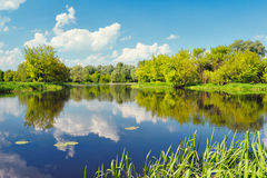 Narew river water Poland clouds blue sky pond lake trees Royalty Free Stock Images