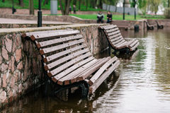 Flood waters in park Royalty Free Stock Photos