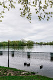 Flood waters in park Royalty Free Stock Image