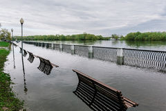 Flood waters in park Stock Images