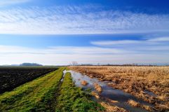 Flooded agriculture field. Late autumn in the countryside and flooded corn field Stock Image