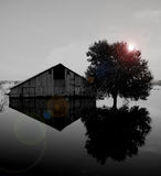 Flooded Barn Royalty Free Stock Photography