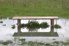 Flooded bench Stock Photo