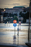 Flooded city of hungary Stock Images