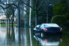Flooded Compact Cars Royalty Free Stock Photography