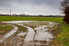 Flooded and deeply rutted entrance to field Stock Image