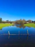 Flooded Farm Creek Royalty Free Stock Photography