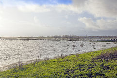 Flooded Farm fields Somerset England. Flooded farm fields in the countryside of Somerset south west England stock photos