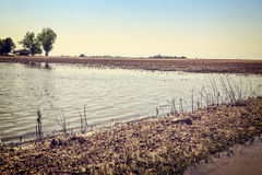Flooded farmland Royalty Free Stock Image