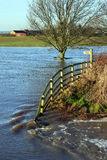 Flooded Farmland - Yorkshire - England Royalty Free Stock Photos