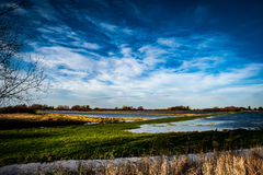 Flooded fenland and stormy sky Stock Photography