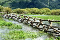 Flooded field. Heavy snow melt in 2009 caused streams to overflow.  This scene is from a meadow in Star Valley, Wyoming Stock Images