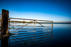 Flooded field gate and reflection Royalty Free Stock Photo
