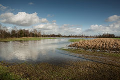 Flooded fields Royalty Free Stock Image