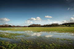 Flooded fields Stock Photos