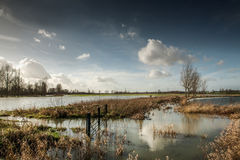 Flooded fields Royalty Free Stock Photography