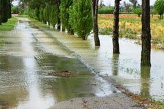 Flooded fields Stock Photos