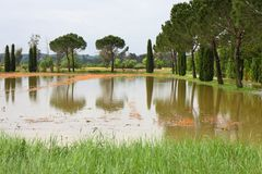 Flooded fields after torrential rain Royalty Free Stock Image