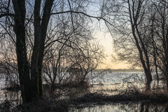 Flooded fields Royalty Free Stock Photos