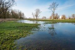 Flooded floodplain next to a Dutch river Royalty Free Stock Photography