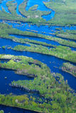 Flooded forest plains Stock Photo