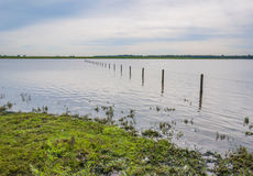 Flooded grassland with a barbed wire fence Royalty Free Stock Photos