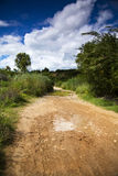 A flooded gravel road Royalty Free Stock Photos