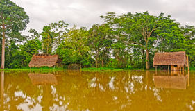 Flooded houses during high water. On the Amazon stock image