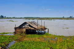 Flooded hut in the river or lake Stock Images