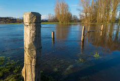 Flooded land Stock Photography